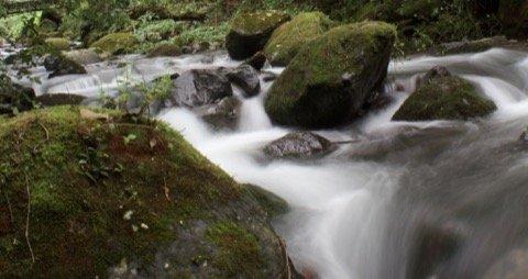 Rio Chiriqui Viejo misty with moss in rocks