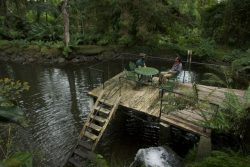 Andres Maduro and Erick olmos in deck on lake of garden of Finca Dracula touristic attraction