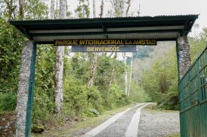 Puerta al parque, portón verde , entrada de bienvenida