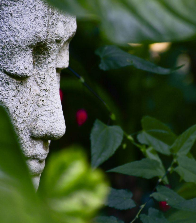 Cara de la estatua de Buda con plantas de fondo verde